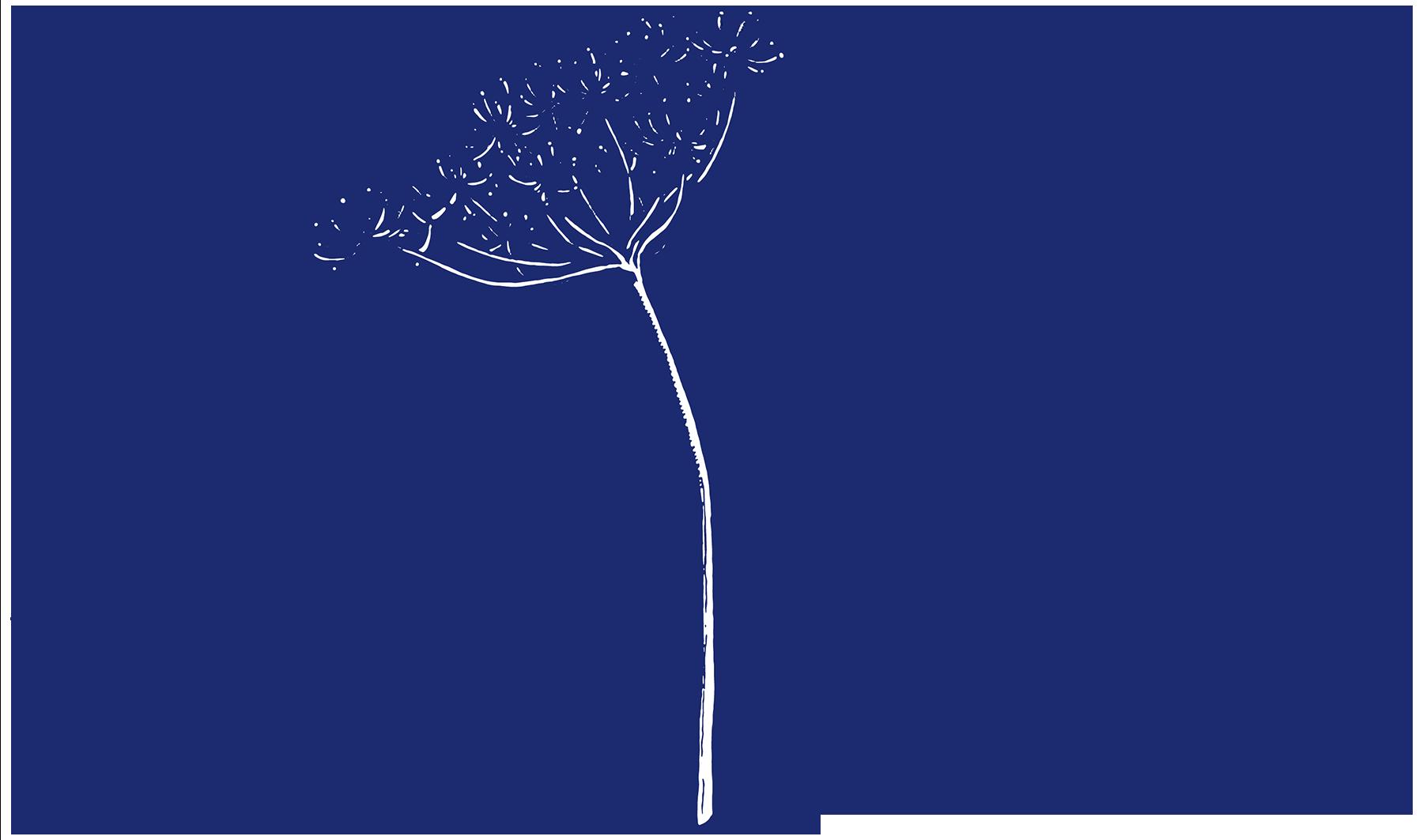 Laurén Interiors | e-consult